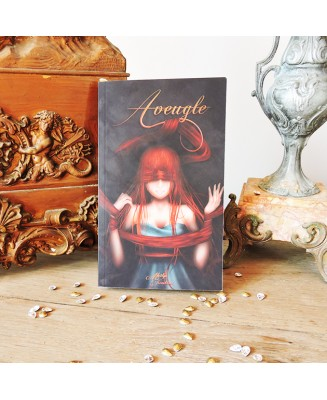 Aveugle - illustrated novel