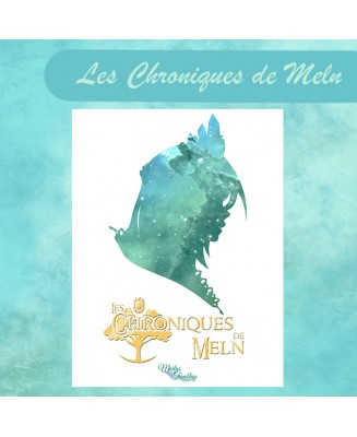 Les Chroniques de Meln - Illustrated novel
