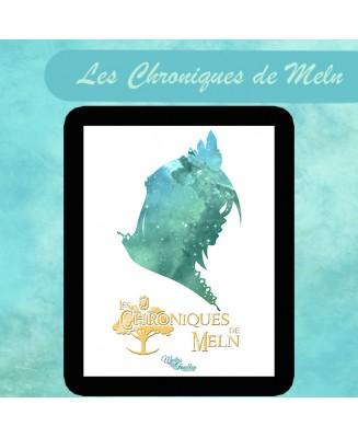 """Roman """"Les Chroniques de Meln"""" - Numérique"""